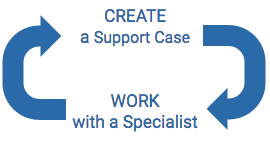 CREATE a Support Case and Work with specialist