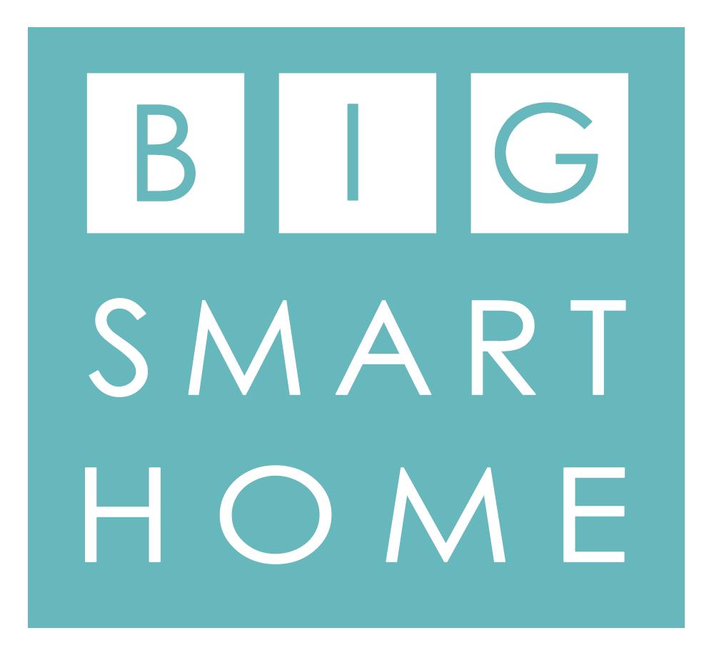Big Smart Home